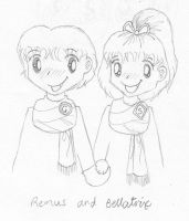 Remus and Bellatrix by melodythelittlepony