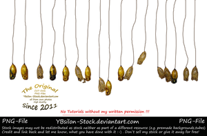 Cocoons on line by YBsilon-Stock by YBsilon-Stock