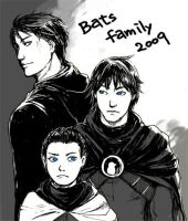 batman family 2009 by calixchan