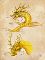 Chinese dragon sketches by cursed-sight