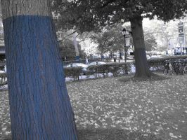 Blue Out: The Trees by Tustin2121