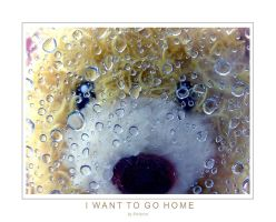 I want to go home by pelleron