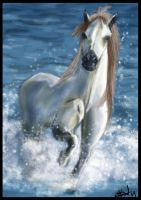 Horsie Study Painting by Bardsville