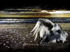where angels rest by fideauxx