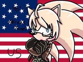 America the hedgehog by milesprower-9