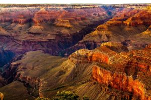 The Very Grand Canyon by BeauNestor
