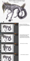 Image cleaning tutorial by Reedflower101