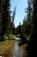 Sawtooth Stream 1 2008 by pricecw-stock