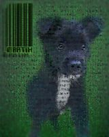 The Matrix -puppy- by JaQy
