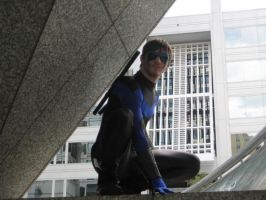 Great Nightwing Shot by Bluebird0020