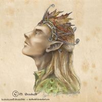 Thranduil, Elvenking of Mirkwood by she1badelf
