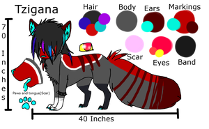 Tzigana Ref *READ DESCRIPTION!* by Rose-Sherlock