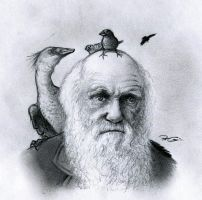Darwin Day by RobtheDoodler