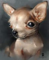 20160714 Chihuahua Psdelux by psdeluxe