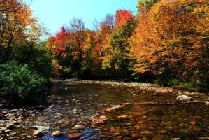 Stock: Rocky Autumn Stream by Celem
