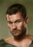 Andy Whitfield by Hellbay