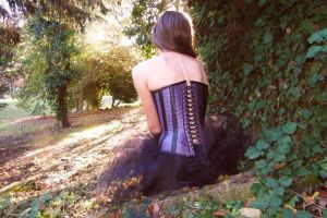 Corset by Desperateneedle