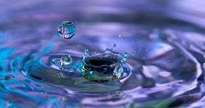 Opposites by Creative--Dragon