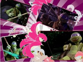 sweet donatello-tmnt2012 collage by silverwolfygirl2