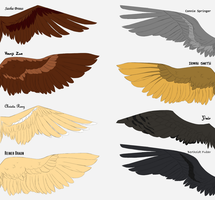 SnK Wings (2/2) by Fayolinn