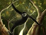 Gibbon by Navagonz