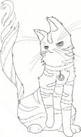 the cat by onin07