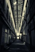 The Hawthorne Passage by ArgentumChloride