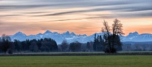ALPS jm7953 HDR by joergens-mi