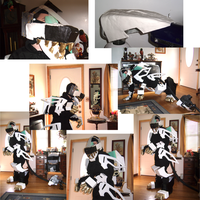 Liger Zero, Full Cosplay, WIP by ShadowFox777