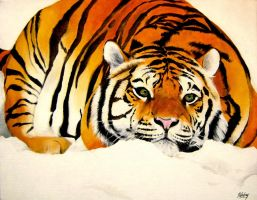 Aline's tiger by Poledrey