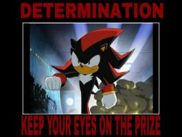 Determination - Shadow by animorphs5678