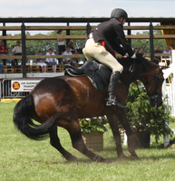 Jumping stock 3 by ByMelody