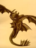 Toothless by Sunny-la