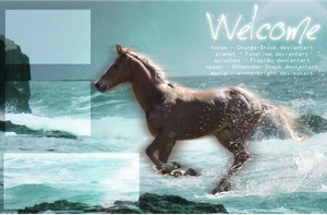 FREE Howrse Layout 001 by winterbright