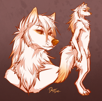 Arctic Wolf Design by Majime