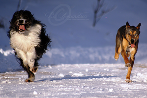 running . together by Titovn