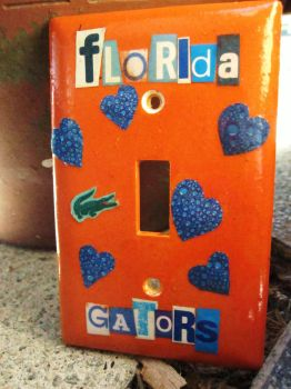 Florida Gators by Jaquilin