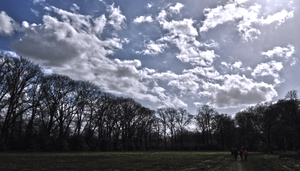Driebergen's Sky by geko1993