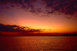 Darwin skyline - sunset 2 by wildplaces
