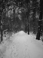 The Path8 by Lukotus