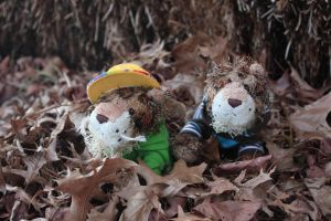 Twins In The Leaves by AlvinAndTheWebkinz