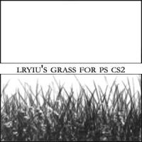 Lryiu's Grass by Lryiu-Stock
