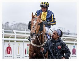A Day At The Races -The Winner by AndersStangl