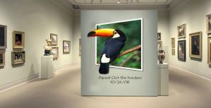 Museum of parrots by ThaMex4lif3