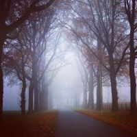 Afternoon October by Justine1985