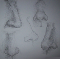 Nose Studies by SebastChan010