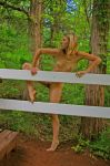 Bush Girl and Fence 2 by candhphotography