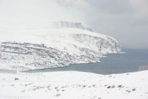 Winter Coast and Mountain by netrex