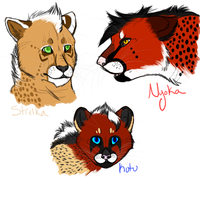 THK Cheetah Headshots  by Wolfchick36