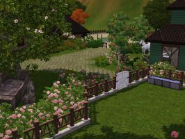 the house by TheSims3Pets